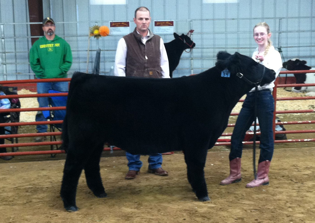 2012 Fall Kick Off Champion Steer